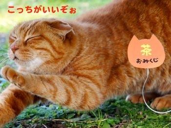 299kuji-3.jpg