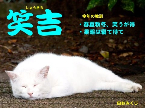 299kuji-4.jpg