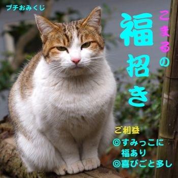 346kuji-5.jpg