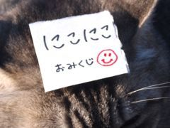 395kuji-3.jpg